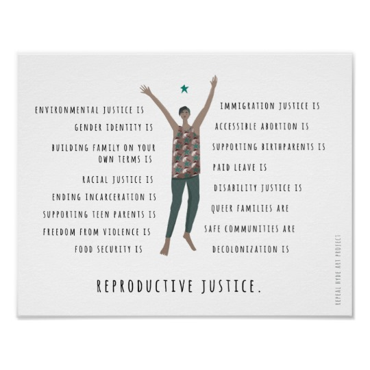 reproductive justice mini poster r73b536d195d44253860ac0c664e6a549 zvn 8byvr 540
